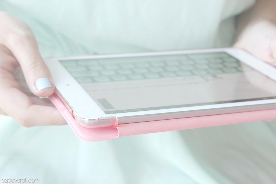 Mint iPad