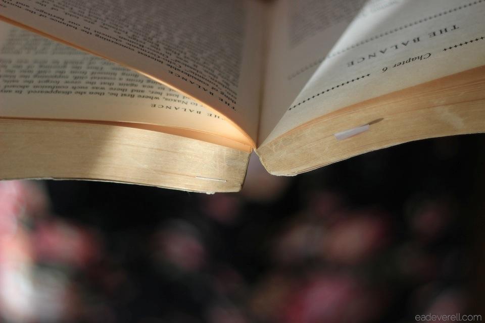 Sunlit book